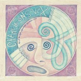 Chameleons Vinyl